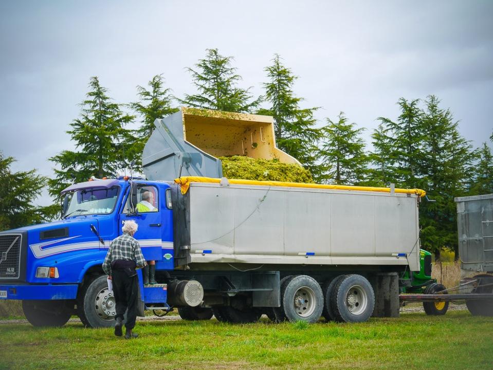 gondola into truck-1060420