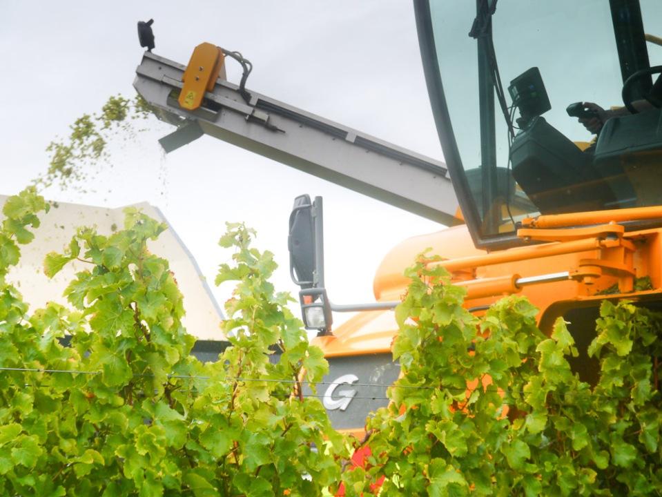 Harvester Loddon-1060375
