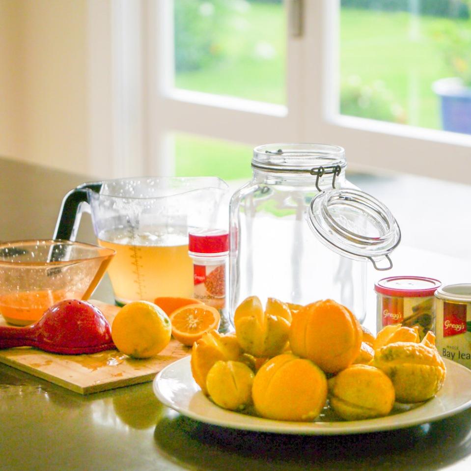 preserving-lemons