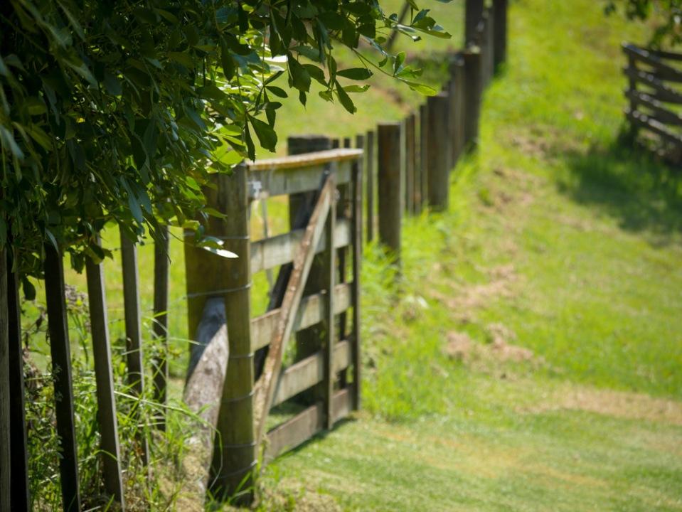 Gate-1120288