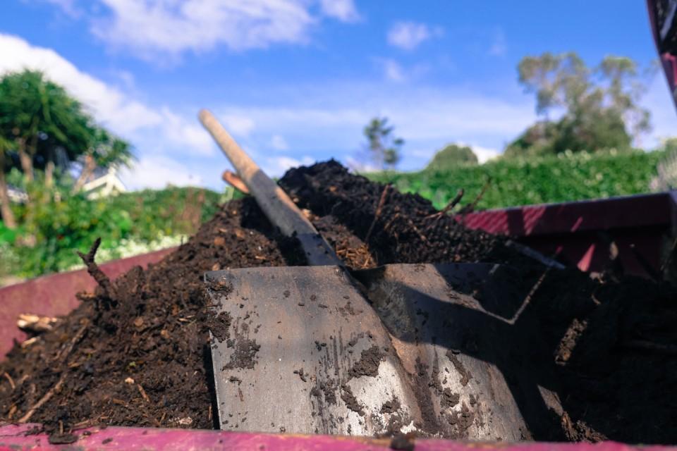 compost-1140977