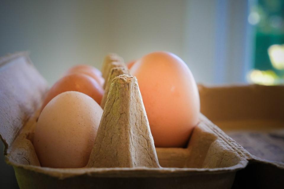 free-range-eggs-1150108