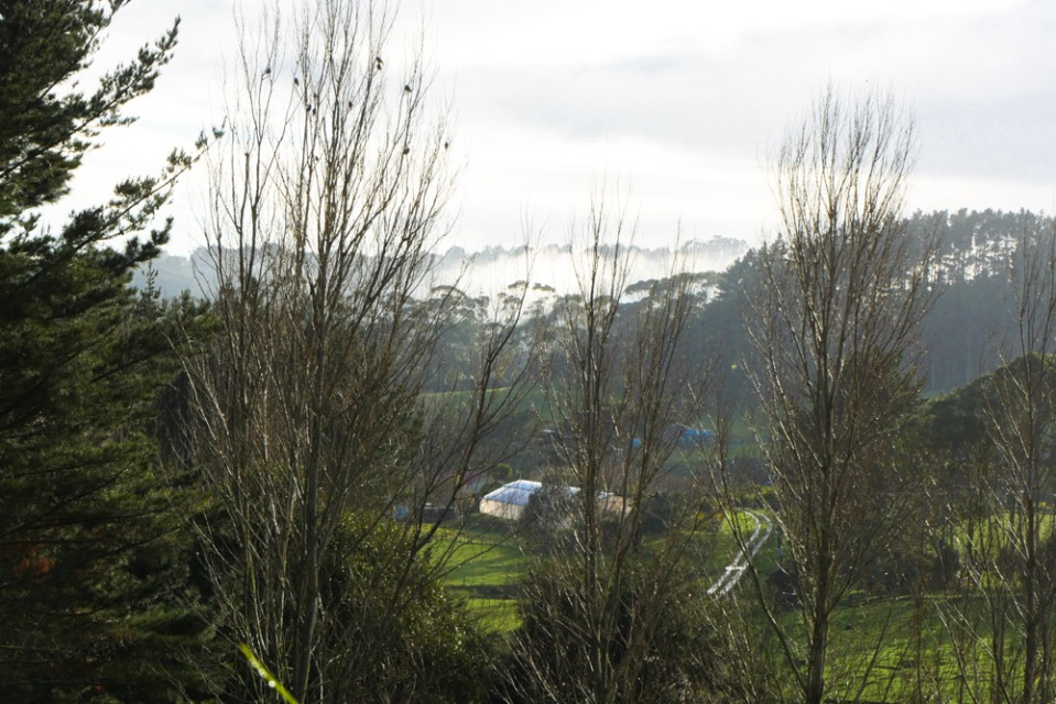 morning-view-1150311