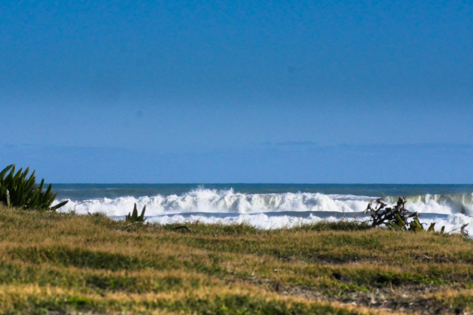 muriwai beach-1150797