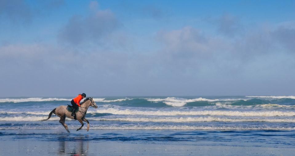horse-riding-at-muriwai-1160084