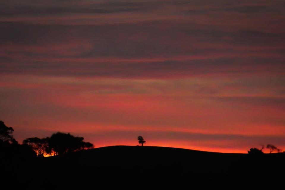 sunset2015-1200974