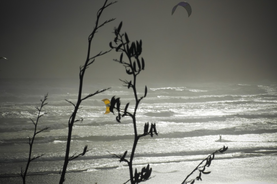 Yellow kite