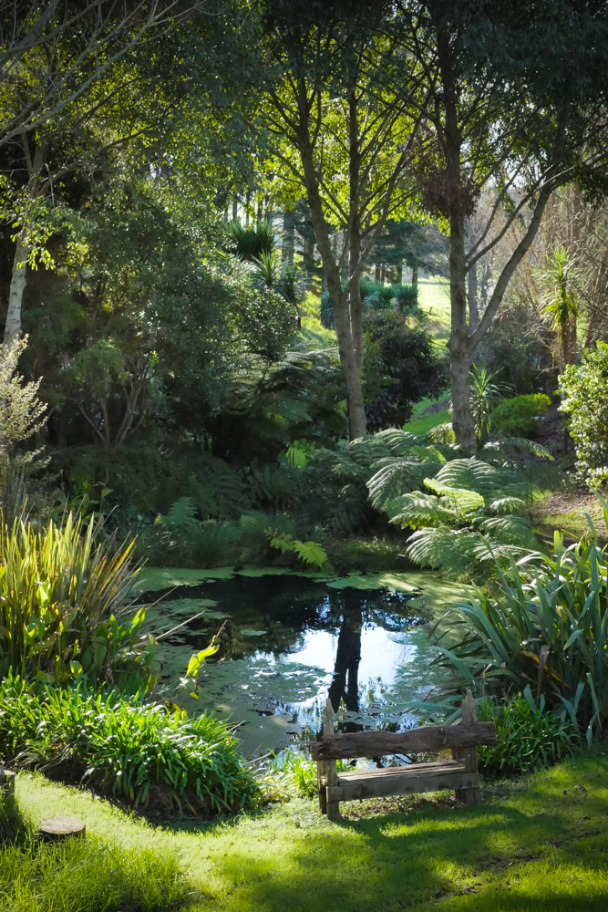frog pond farm-1250695