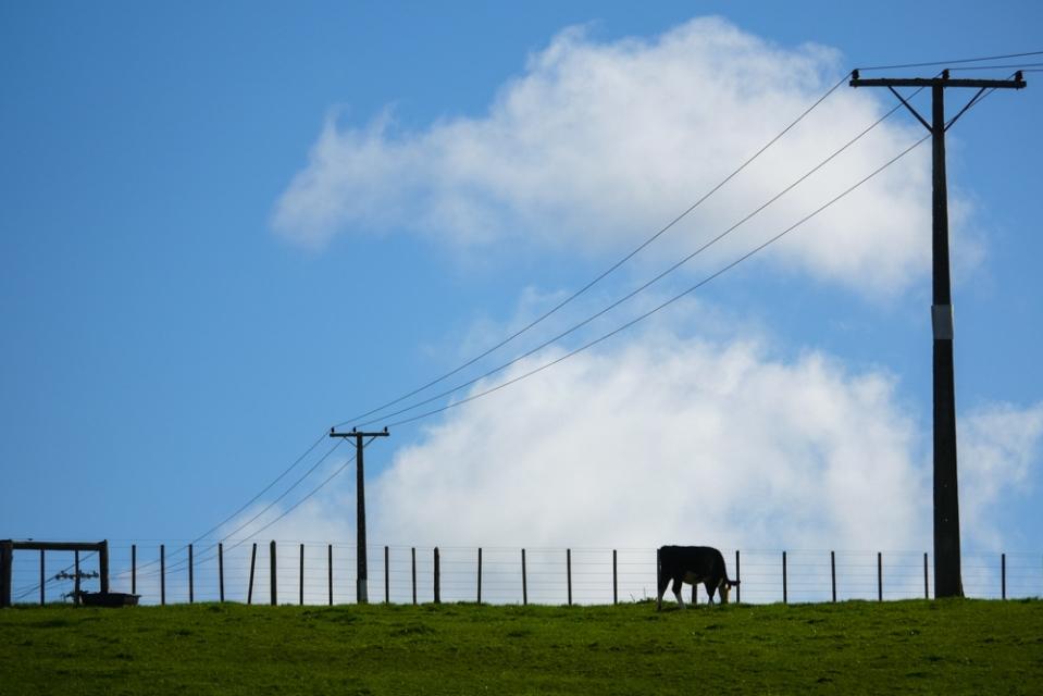 power lines-1260262